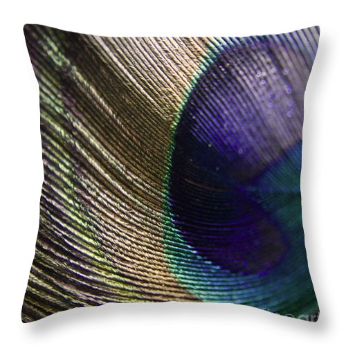 Peacock Throw Pillow featuring the photograph Feather Fan by Andrea Goodrich
