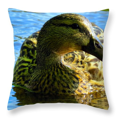 Mallard Throw Pillow featuring the photograph Feathered Female by Art Dingo