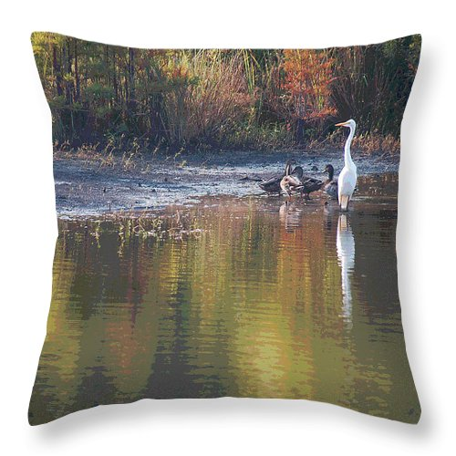 Egret Throw Pillow featuring the photograph Feathered Friends by Suzanne Gaff