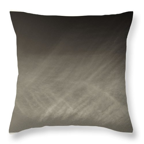 Brockwell Park Throw Pillow featuring the photograph Feathers In The Sky by Lenny Carter