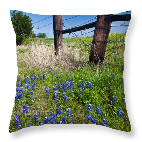 Texas Bluebonnets Throw Pillow featuring the photograph Fence Posts by Mark Alder