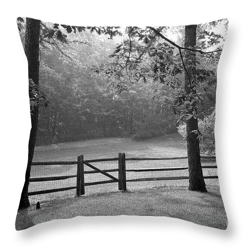 Black & White Throw Pillow featuring the photograph Fence by Tony Cordoza