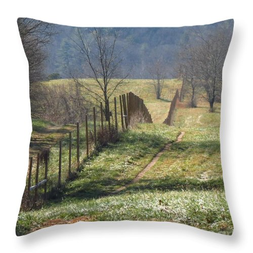 Fence Throw Pillow featuring the photograph Fence View by Anita Adams