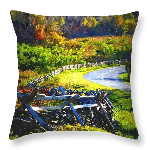 Fall Throw Pillow featuring the photograph Fenced In by Cathy Shiflett