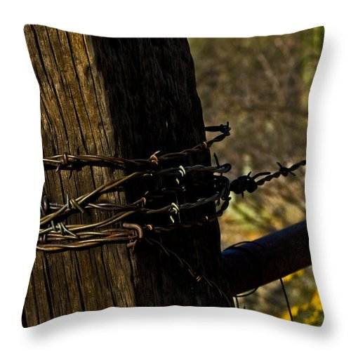 Barbed Wire Throw Pillow featuring the photograph Fenceline by Patrick Moore