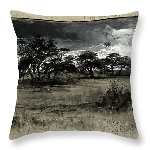 1887 Throw Pillow featuring the drawing Fenn Thorn-trees, C1887 by Granger