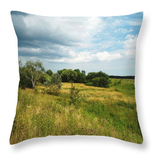 Landscape Throw Pillow featuring the photograph Field And Sky by Chloe Shackelton