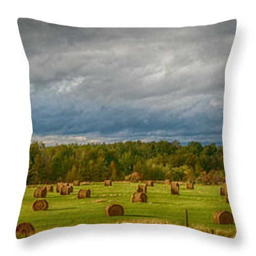 Rural Throw Pillow featuring the photograph Field Of Bales by Paul Freidlund