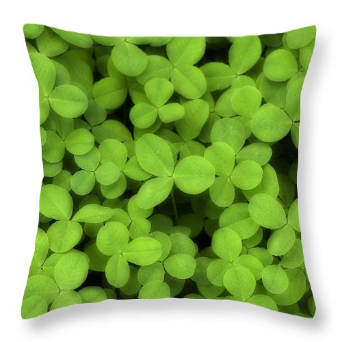 Clover Throw Pillow featuring the photograph Field Of Clover E52 by Wendell Franks