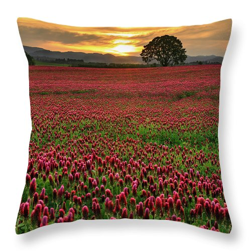 Scenics Throw Pillow featuring the photograph Field Of Crimson Clover With Lone Oak by Jason Harris