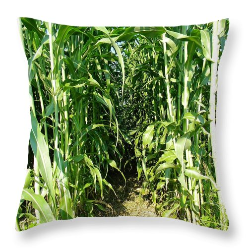 Field Throw Pillow featuring the photograph Field Of Dreams by Matthew Seufer