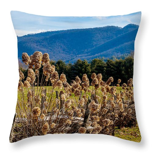 Field Throw Pillow featuring the photograph Field Of Dreams by Wayne White