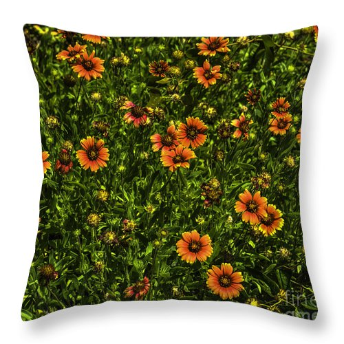 Field Of Flowers Throw Pillow featuring the photograph Field Of Flowers by Dale Powell