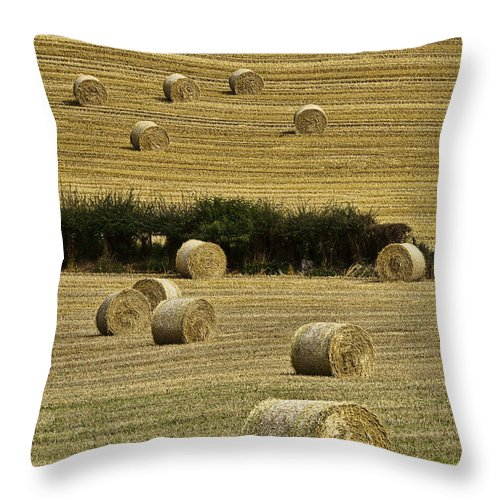 Landscape Throw Pillow featuring the photograph Field Of Hay Bales by Marcia Colelli