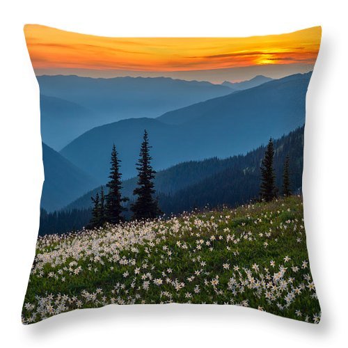 Landscape Throw Pillow featuring the photograph Field Of Stars by Don Hall