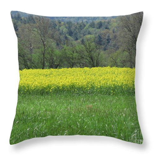 Nature Throw Pillow featuring the photograph Field Of Yellow by Anita Adams