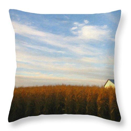 Farm Throw Pillow featuring the photograph Fields Of Gold - Digital Painting Effect by Rhonda Barrett