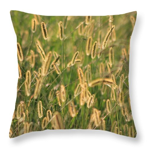Reflections Throw Pillow featuring the photograph Fields Of Gold by Robin Vargo