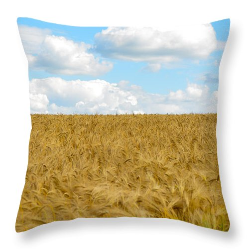 Salisbury Throw Pillow featuring the photograph Fields Of Wheat by Jamie Heeke