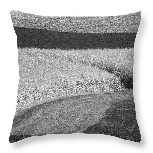 Fields Throw Pillow featuring the photograph Fields by Steven Ralser