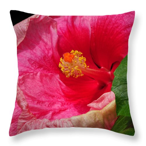 Hibiscus Throw Pillow featuring the photograph Fiery Hibiscus by Dave Mills