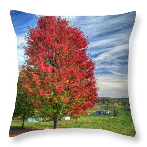 Maple Throw Pillow featuring the photograph Fiery Red Maple by Jaki Miller