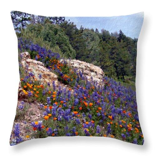 Flowers Throw Pillow featuring the photograph Figueroa Mountain Splendor by Kurt Van Wagner
