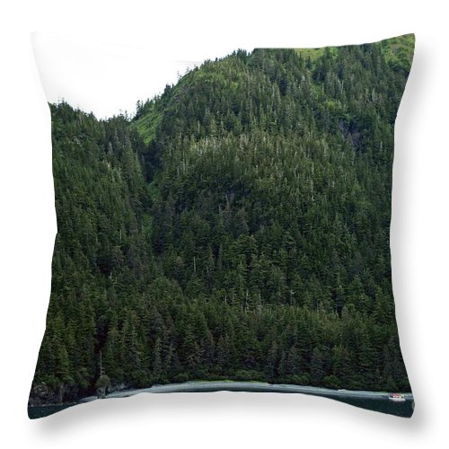 Alaska Throw Pillow featuring the photograph Figure That by Joseph Yarbrough