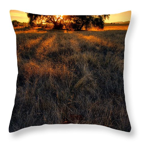 Big Sky Throw Pillow featuring the photograph Filtered by Peter Tellone