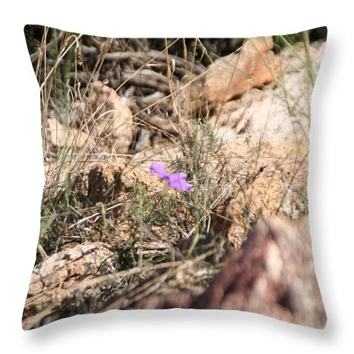 Arizona Throw Pillow featuring the photograph Finding A Way by David S Reynolds