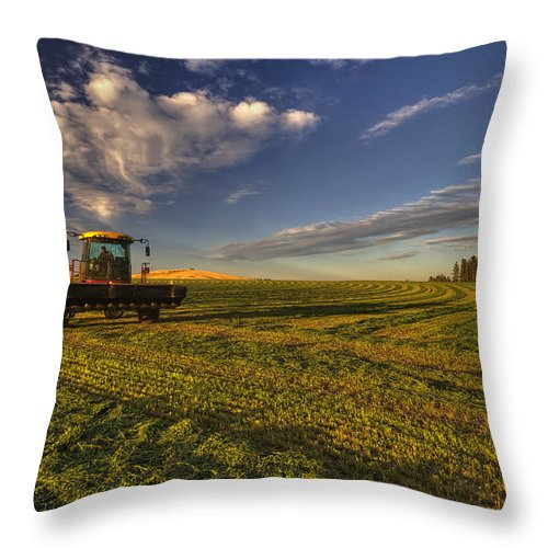 Mark Kiver Throw Pillow featuring the photograph Finishing Touches by Mark Kiver