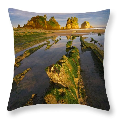 Landscape Throw Pillow featuring the photograph Fins by Don Hall