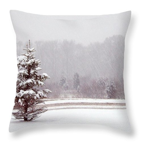 Clearing Throw Pillow featuring the photograph Winter Scene by FL collection