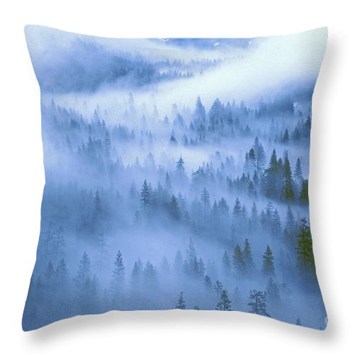 North America Throw Pillow featuring the photograph Fir Trees Shrouded In Fog In Yosemite Valley by Dave Welling