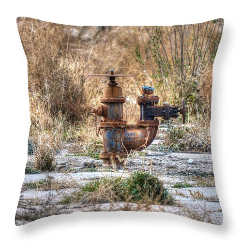 Rust Throw Pillow featuring the photograph Fire Hydrant For The Weeds by M Dale