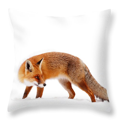 Fox Throw Pillow featuring the photograph Fire 'n Ice by Roeselien Raimond