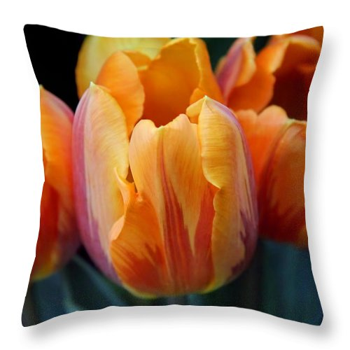 Tulip Throw Pillow featuring the photograph Fire Orange Tulip Flowers by Jennie Marie Schell
