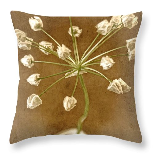 Seed Head Throw Pillow featuring the photograph Firecracker by Peggy Hughes