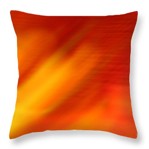 Abstract Throw Pillow featuring the photograph Firelight O by Susan Herber