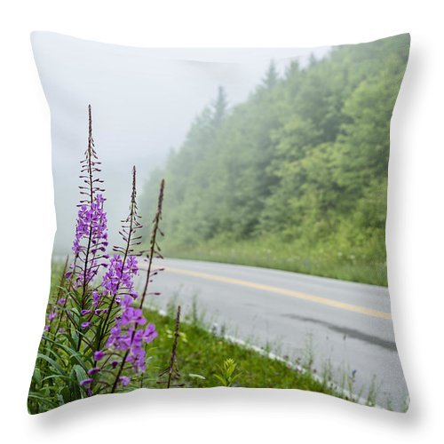 Summer Throw Pillow featuring the photograph Fireweed And Fog Scenic Highway by Thomas R Fletcher