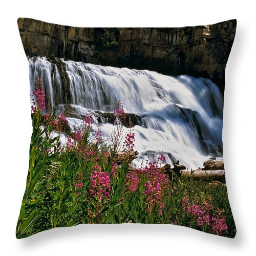 Mountains Throw Pillow featuring the photograph Fireweed Blooms Along The Banks Of Granite Creek Wyoming by Ed Riche
