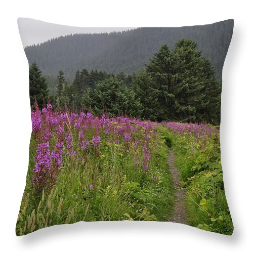 Fireweed Throw Pillow featuring the photograph Fireweed Path At Fish Creek by Cathy Mahnke