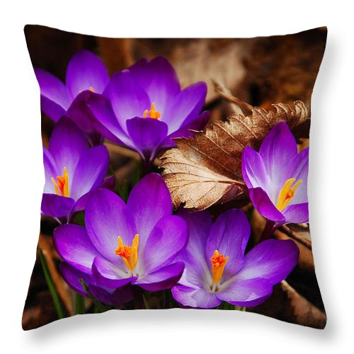 Flower Throw Pillow featuring the photograph First Signs Of Spring by Elaine Manley