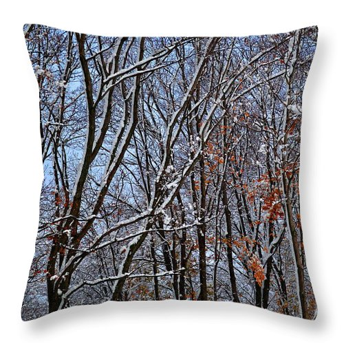 Snow Throw Pillow featuring the photograph First Snow 4 by April Patterson