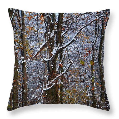 Snow Throw Pillow featuring the photograph First Snow by April Patterson