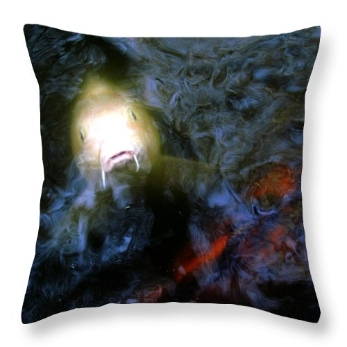 Fish Throw Pillow featuring the photograph Fish Encounter by Debra Hurd