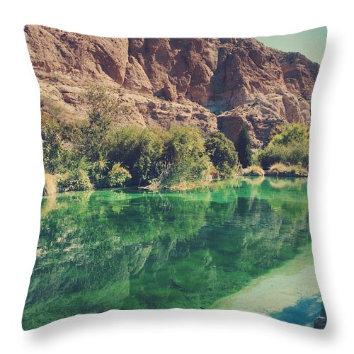 Whitewater Preserve Throw Pillow featuring the photograph Fish Gotta Swim by Laurie Search