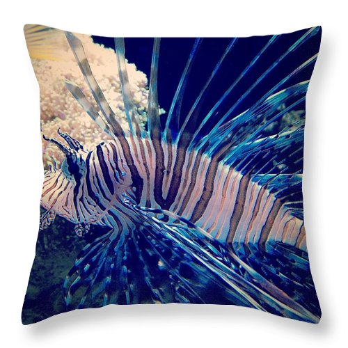 Fish Throw Pillow featuring the photograph Fishy by Aaron Swenson