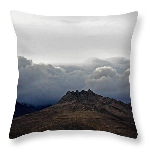 Five Fingers Throw Pillow featuring the photograph Five Fingers by Richard Fisher
