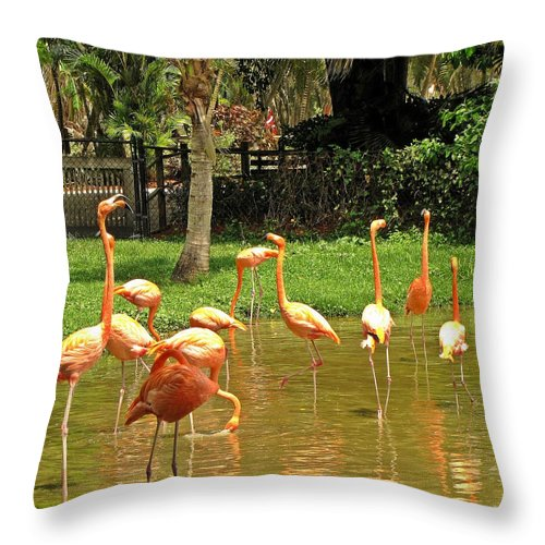 Flamingos Throw Pillow featuring the photograph Flamingos Wading by MTBobbins Photography